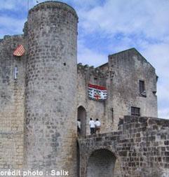 chateau de saint jean d'angle